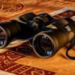 Espionajes en el Reino del Clientelismo