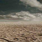 Agencia Internacional de la Energía: Del sueño a la pesadilla