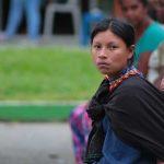 Las tierras indígenas reúnen 80 por ciento de la biodiversidad
