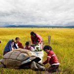 ¿En qué va la Reforma Rural Integral?
